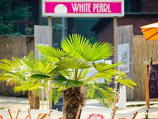 Palmen Beach Club White Pearl Bremen